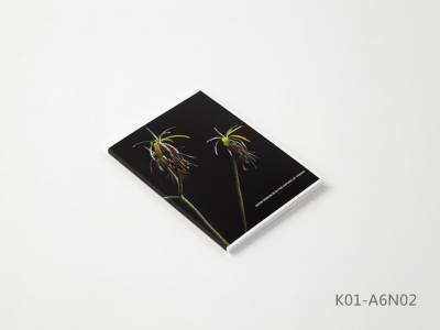 Kobeha Koncreat A6 Kareli Tamotsu Yagı Defter No:02 - Thumbnail