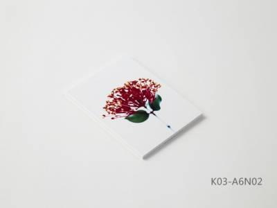 Kobeha Koncreat A6 Kareli Takao Maruyama Defter No:02 - Thumbnail