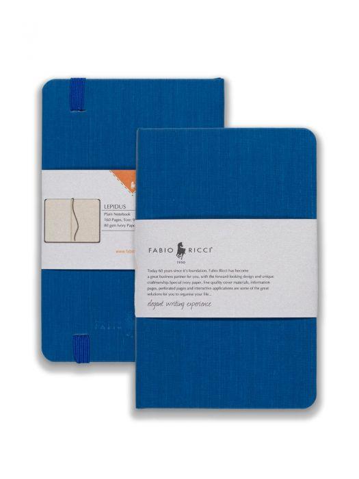 Lepidus Saks Mavi Çizgisiz 9x14 cm