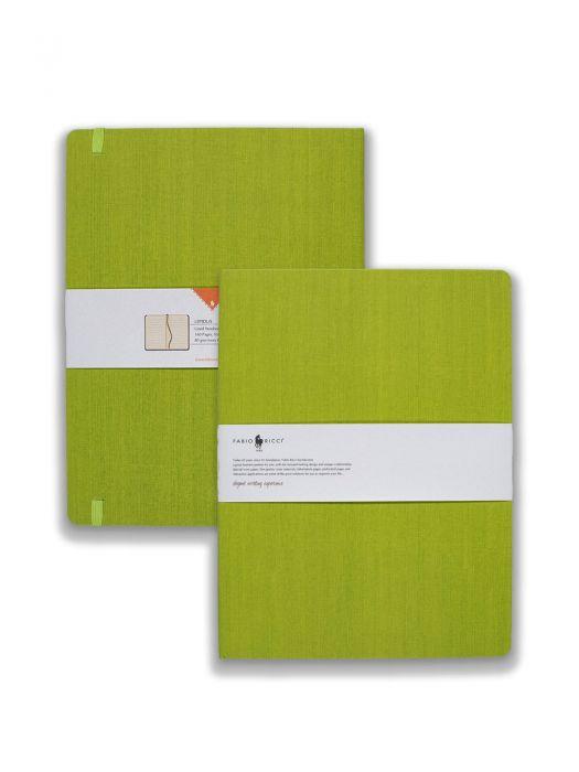 Fabio Ricci Lepidus Yeşil Çizgili 19x25 cm