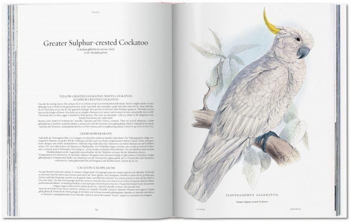 Taschen Edward Lear: The Parrots